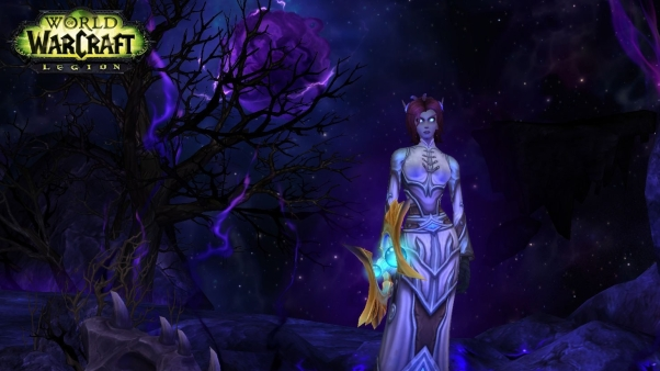 void elf screenshot from world of warcraft